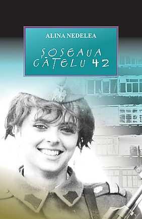 Soseaua Catelu 42 - Array