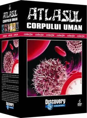 Colectia Atlasul corpului uman - Array