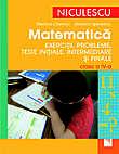 Matematica. Exercitii, probleme, teste initiale, curente si finale - clasa a IV-a  - Steriana Chetroiu, Mariana Spineanu