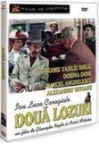Doua Lozuri
