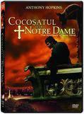 Cocosatul De La Notre Dame - Filmul