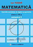 Matematica. Exercitii si probleme de algebra si geometrie. Clasa a VII-a. Semestrul II